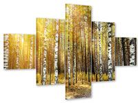 5 Piece Acrylic Print Birch Forest
