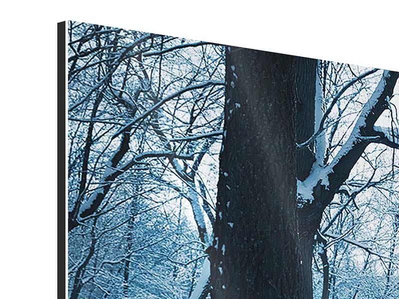 3 Piece Aluminium Print The Forest Without Tracks In The Snow