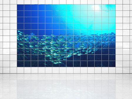 Tile Print Shoal Of Fish