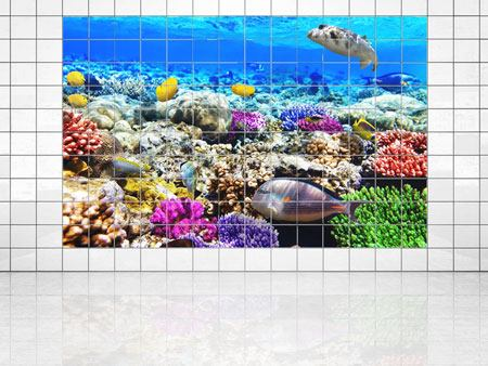 Tile Print Fish Aquarium