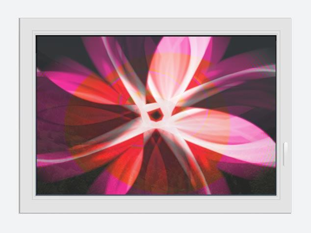 Window Print Abstract Flower Power
