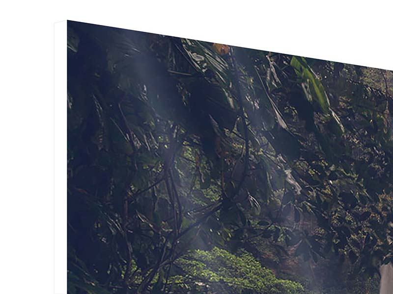 Panoramic Forex Print Waterfall In Mexico