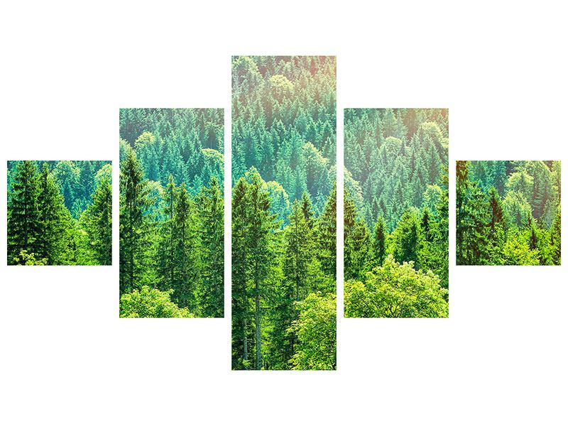 5 Piece Canvas Print The Forest Hill
