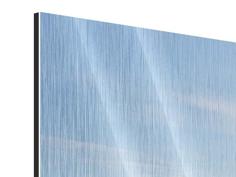 Panoramic Metallic Print Harbor Walls