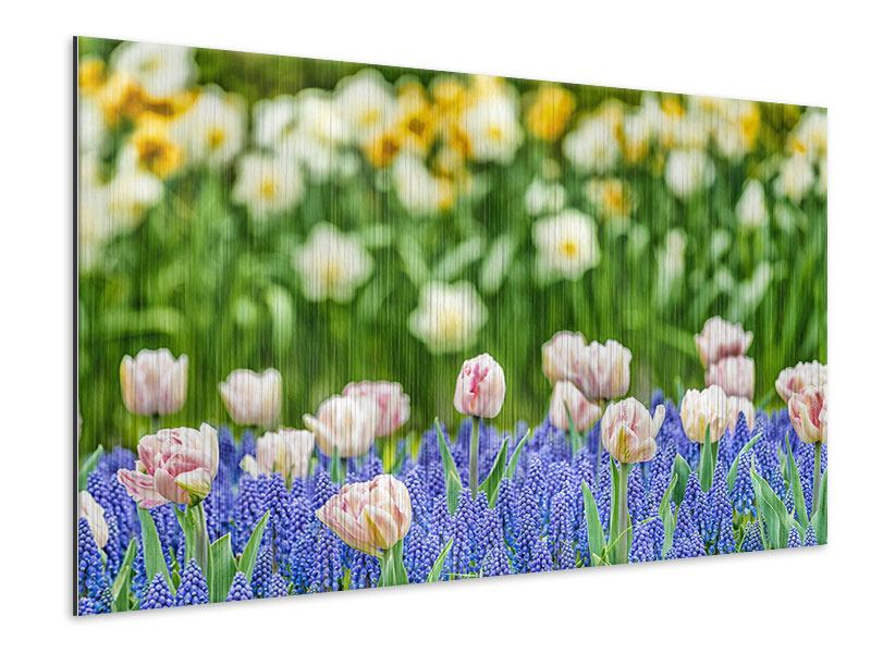 Metallic Print A Garden With Tulips