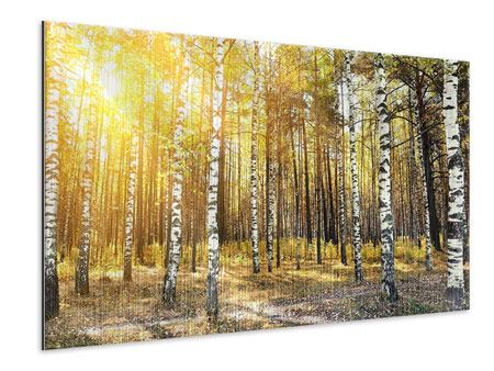 Metallic Print Birch Forest