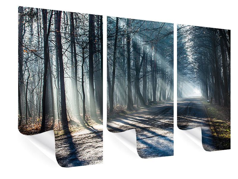 3 Piece Poster Forest In The Light Beam