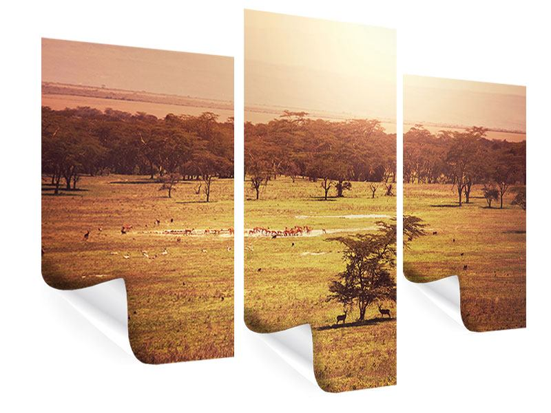 Modern 3 Piece Poster Picturesque Africa