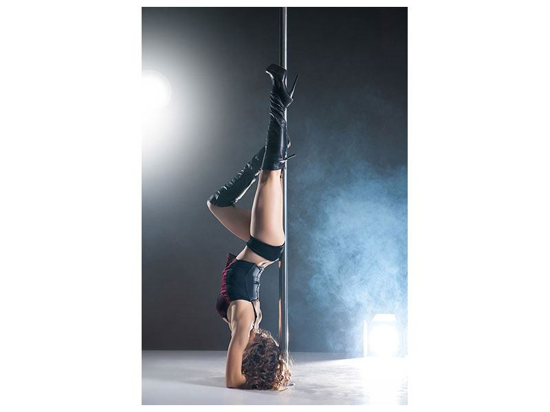 Poster Hot Pole Dance